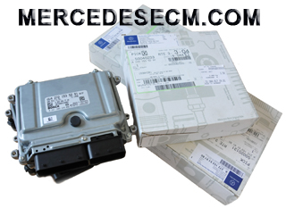 Awesome Mercedes Benz Engine Control Unit And Ecm Replacement Wiring 101 Tzicihahutechinfo